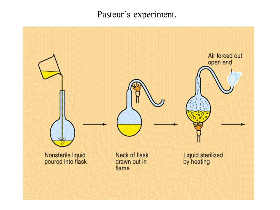 Pasteur's experiment.
