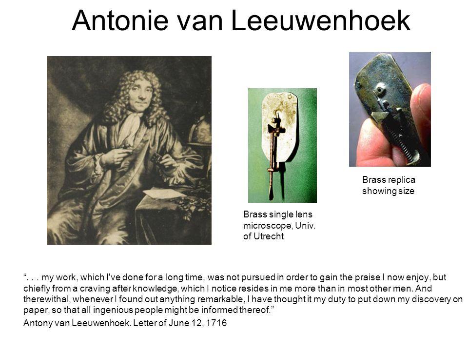 Antonie van Leeuwenhoek ...