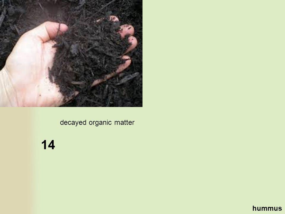 14 hummus decayed organic matter