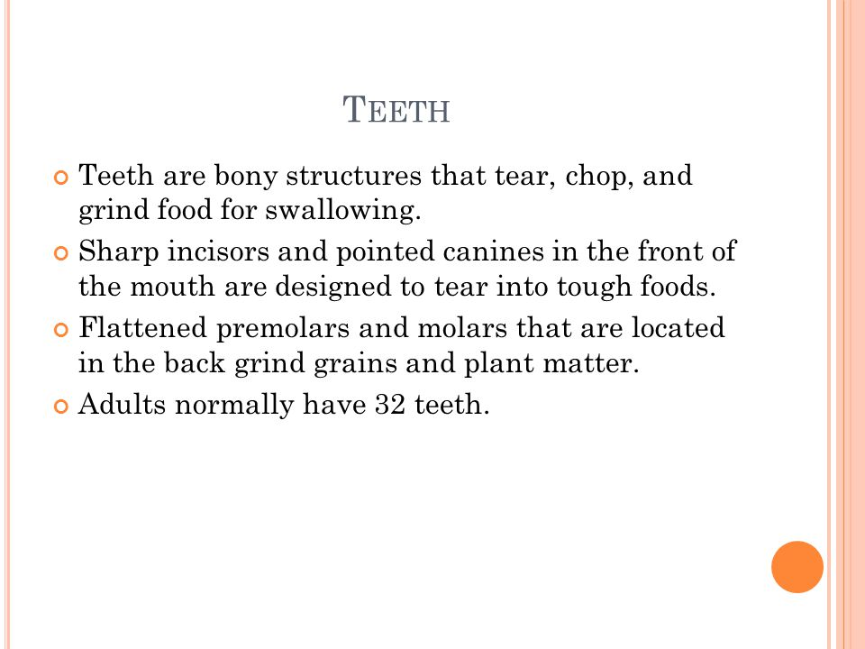 T EETH Teeth are bony structures that tear, chop, and grind food for swallowing. Sharp incisors and pointed canines in the front of the mouth are desi