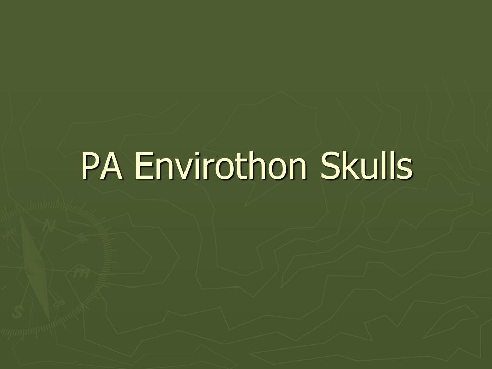 PA Envirothon Skulls