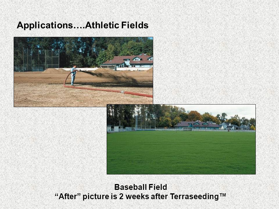 Applications….Athletic Fields Baseball Field After picture is 2 weeks after Terraseeding™