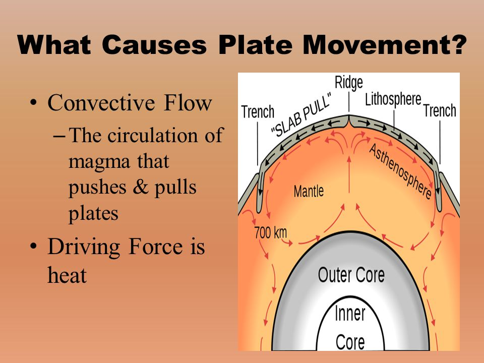 Convective Flow – The circulation of magma that pushes & pulls plates Driving Force is heat
