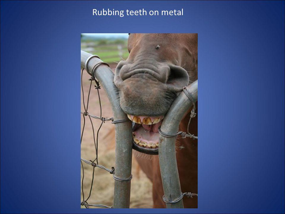 Rubbing teeth on metal