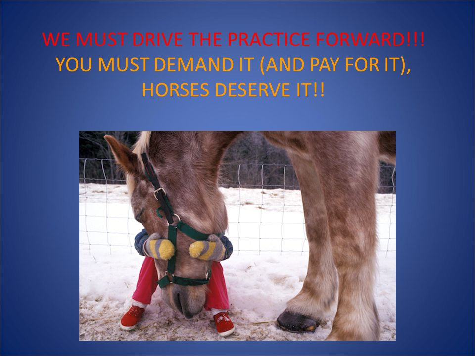 WE MUST DRIVE THE PRACTICE FORWARD!!! YOU MUST DEMAND IT (AND PAY FOR IT), HORSES DESERVE IT!!