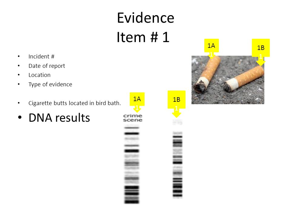 Evidence Item # 1 Incident # Date of report Location Type of evidence Cigarette butts located in bird bath. DNA results 1A 1 1B 1 1A 1 1B 1