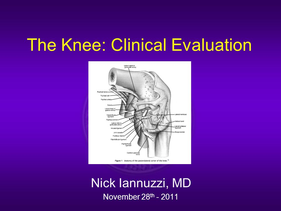 The Knee: Clinical Evaluation Nick Iannuzzi, MD November 28 th - 2011