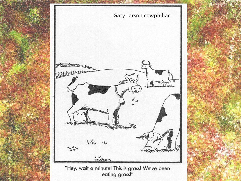 Gary Larson cowphiliac