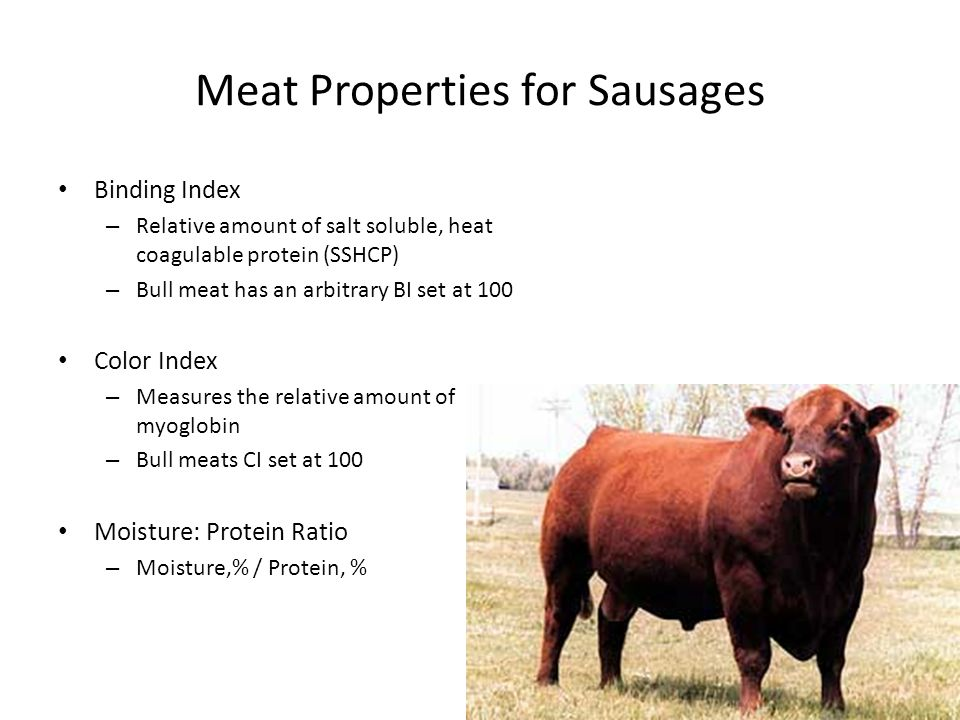 Meat Properties for Sausages Binding Index – Relative amount of salt soluble, heat coagulable protein (SSHCP) – Bull meat has an arbitrary BI set at 100 Color Index – Measures the relative amount of myoglobin – Bull meats CI set at 100 Moisture: Protein Ratio – Moisture,% / Protein, %