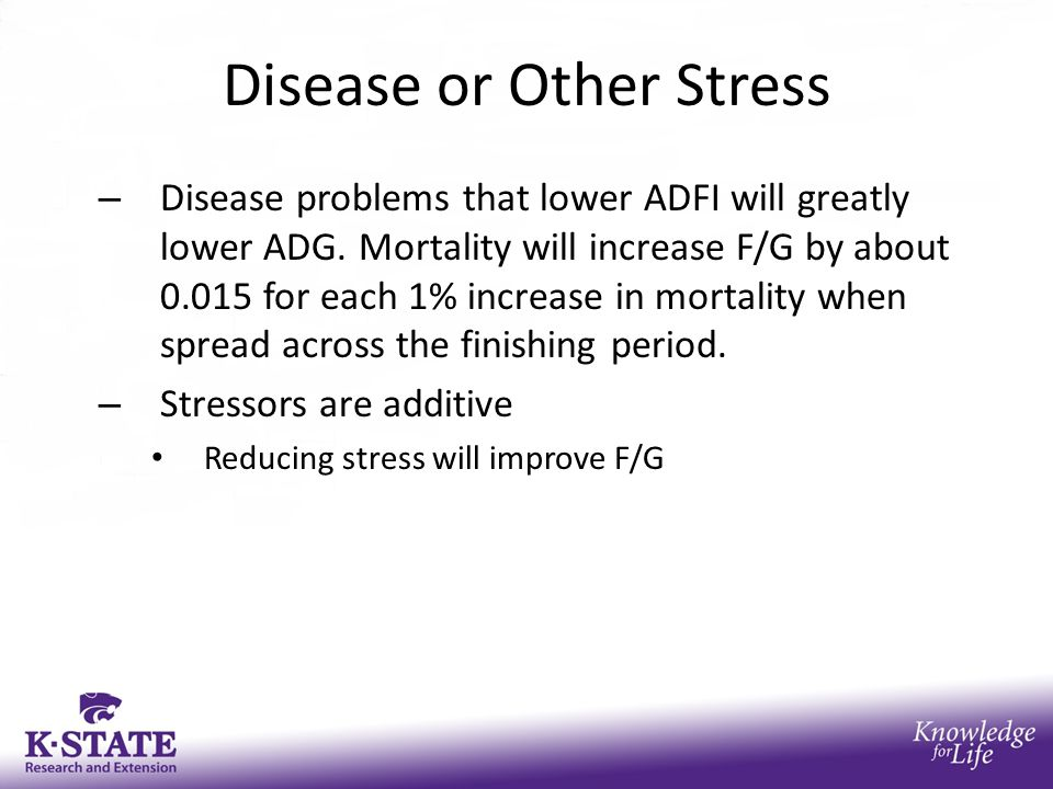 Disease or Other Stress – Disease problems that lower ADFI will greatly lower ADG.