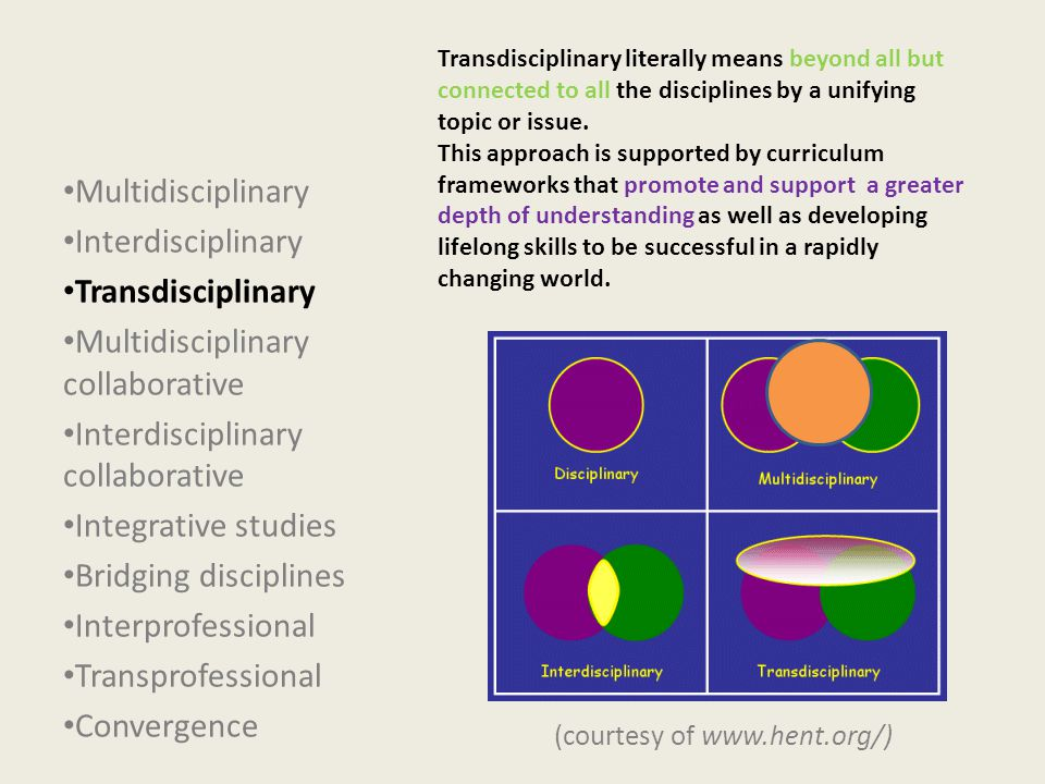 Transdisciplinary literally means beyond all but connected to all the disciplines by a unifying topic or issue.