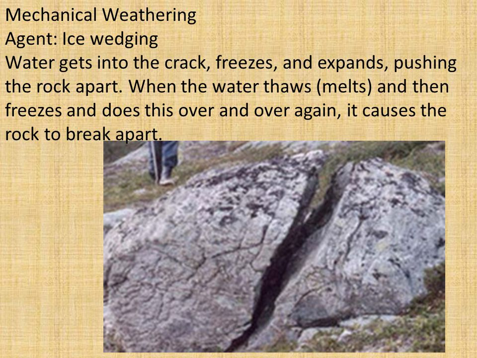 Mechanical Weathering Agent: Ice wedging Water gets into the crack, freezes, and expands, pushing the rock apart. When the water thaws (melts) and the