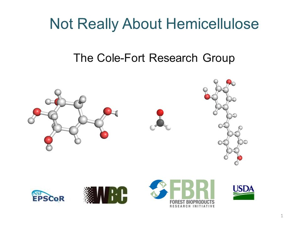Not Really About Hemicellulose The Cole-Fort Research Group 1