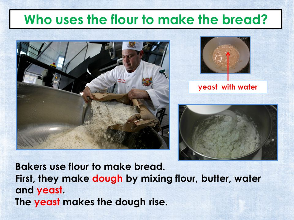 Who uses the flour to make the bread. Bakers use flour to make bread.