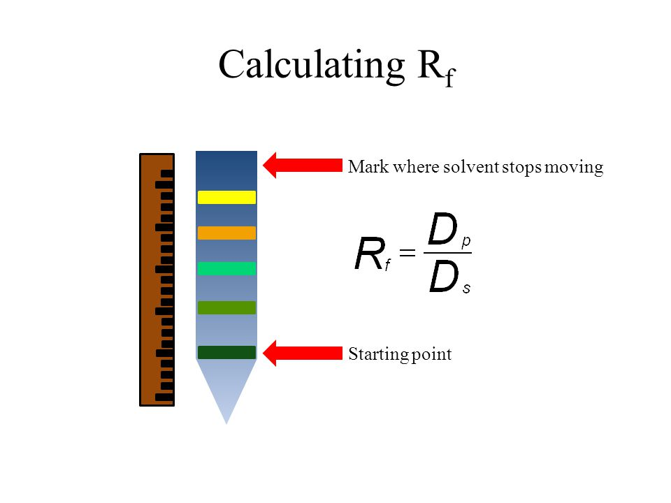 Calculating R f Starting point Mark where solvent stops moving