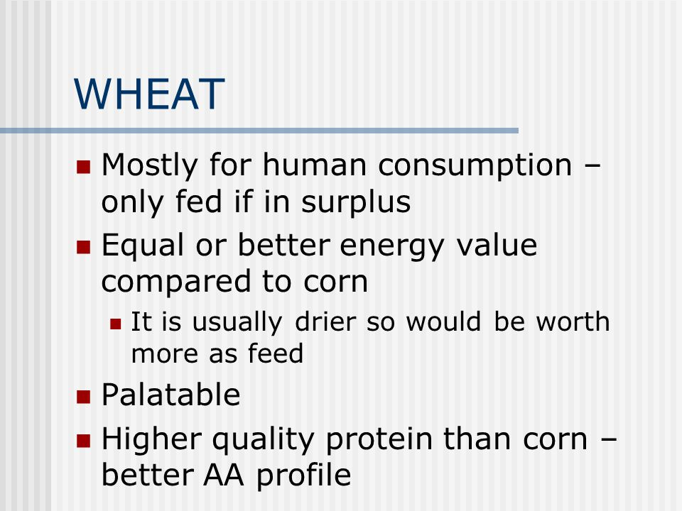 OATS Much higher in fiber than any other grain TDN= 66% vs 89% for corn Rolling helps digestibility Oat Groats = hulled oats, looks like rye or tritic