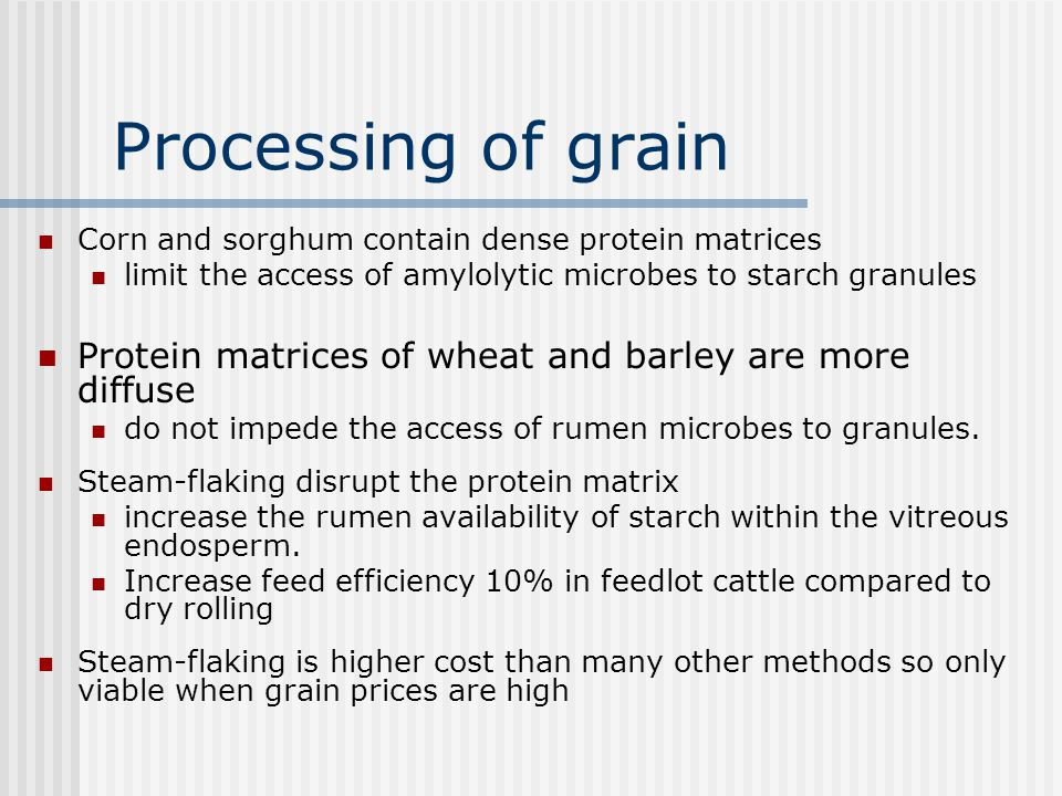 Processing of grain Reducing the seed coat as a barrier Grinding (hammer mill) Quickly change from one feed to another High capacity Dust is a problem