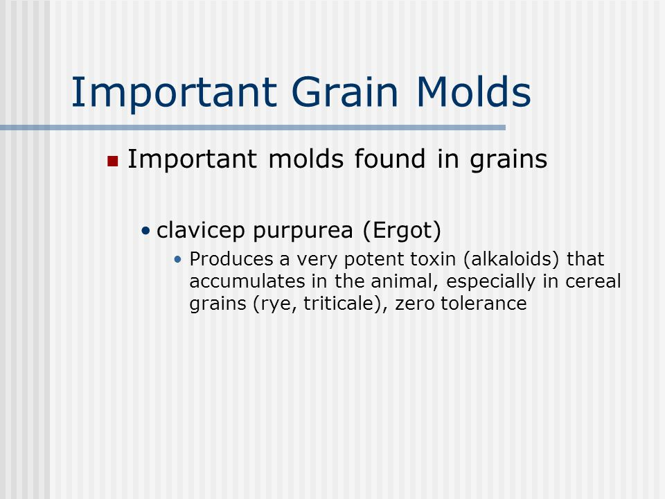 Grain storage, cont. Higher moisture levels cause: Heating Caking Mold that produce poisonous mycotoxins, cause reduced performance poor feed efficien