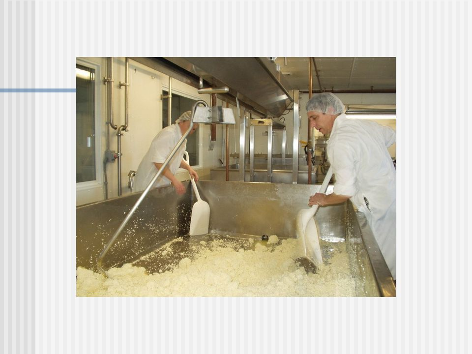 Other Energy By-Products Cane molasses Most common liquid supplement fed to dairy cattle Control dust in TMR 65% TDN (as fed) 2-3 lbs/per cow/day Whey