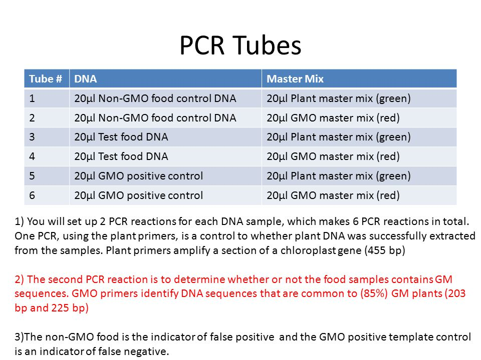 PCR Tubes Tube #DNAMaster Mix 120µl Non-GMO food control DNA20µl Plant master mix (green) 220µl Non-GMO food control DNA20µl GMO master mix (red) 320µl Test food DNA20µl Plant master mix (green) 420µl Test food DNA20µl GMO master mix (red) 520µl GMO positive control20µl Plant master mix (green) 620µl GMO positive control20µl GMO master mix (red) 1) You will set up 2 PCR reactions for each DNA sample, which makes 6 PCR reactions in total.