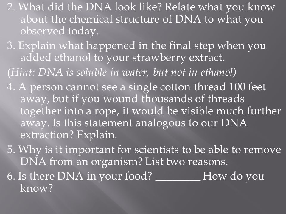2. What did the DNA look like? Relate what you know about the chemical structure of DNA to what you observed today. 3. Explain what happened in the fi