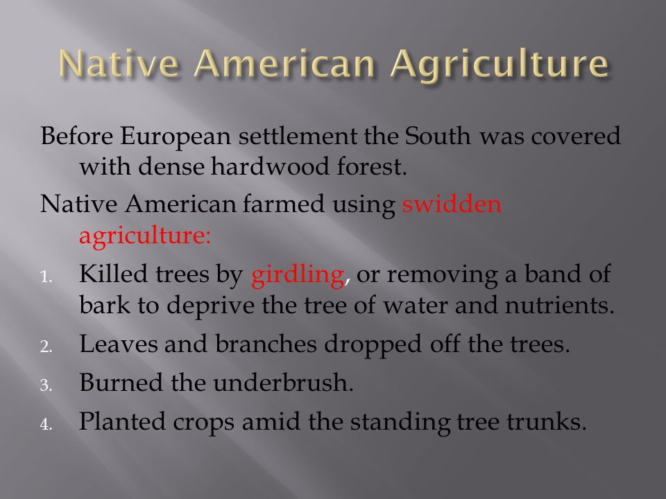 Before European settlement the South was covered with dense hardwood forest. Native American farmed using swidden agriculture: 1. Killed trees by gird