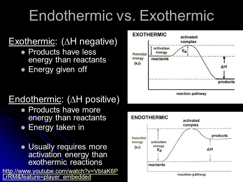 Endothermic vs.