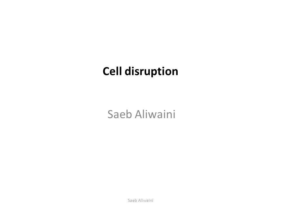 Cell disruption Saeb Aliwaini
