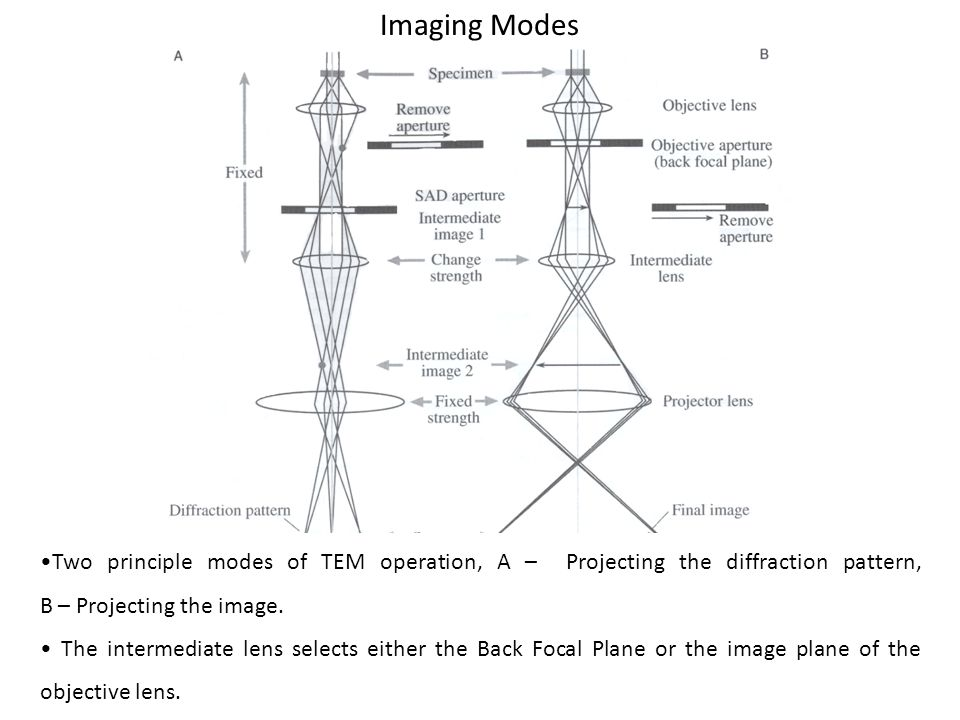 Imaging Modes Two principle modes of TEM operation, A – Projecting the diffraction pattern, B – Projecting the image. The intermediate lens selects ei