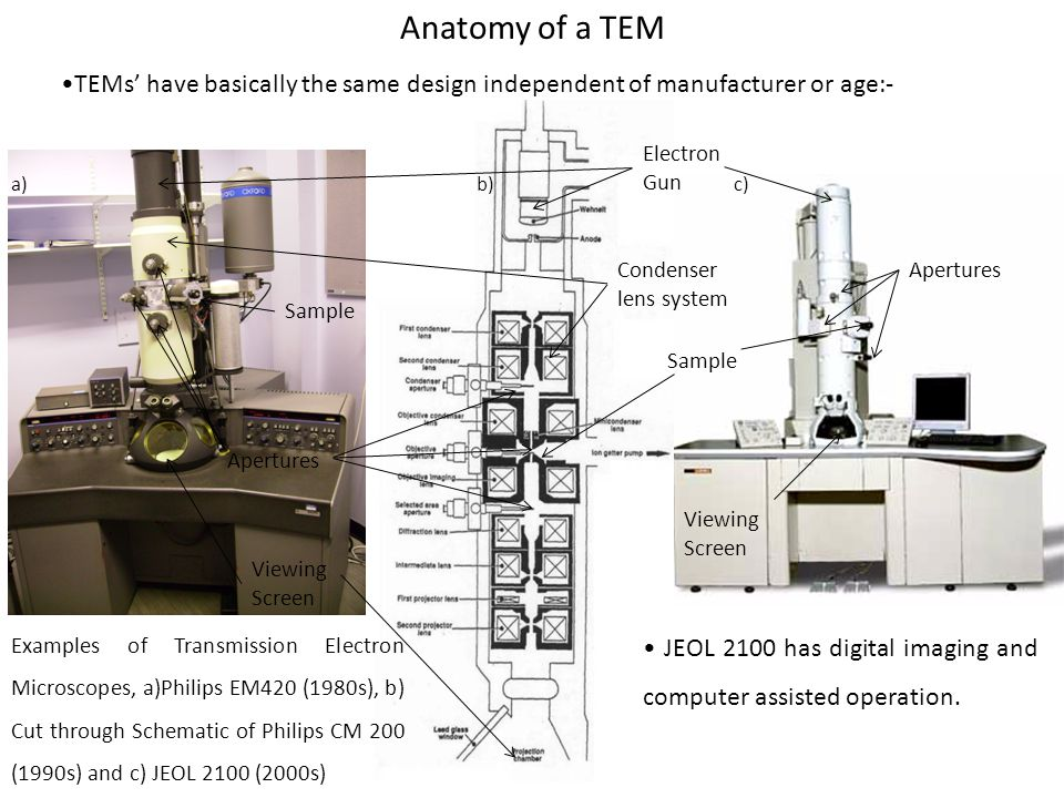 TEMs' have basically the same design independent of manufacturer or age:- Anatomy of a TEM Apertures Viewing Screen Electron Gun Condenser lens system Apertures Sample Viewing Screen a)b)c) Examples of Transmission Electron Microscopes, a)Philips EM420 (1980s), b) Cut through Schematic of Philips CM 200 (1990s) and c) JEOL 2100 (2000s) JEOL 2100 has digital imaging and computer assisted operation.