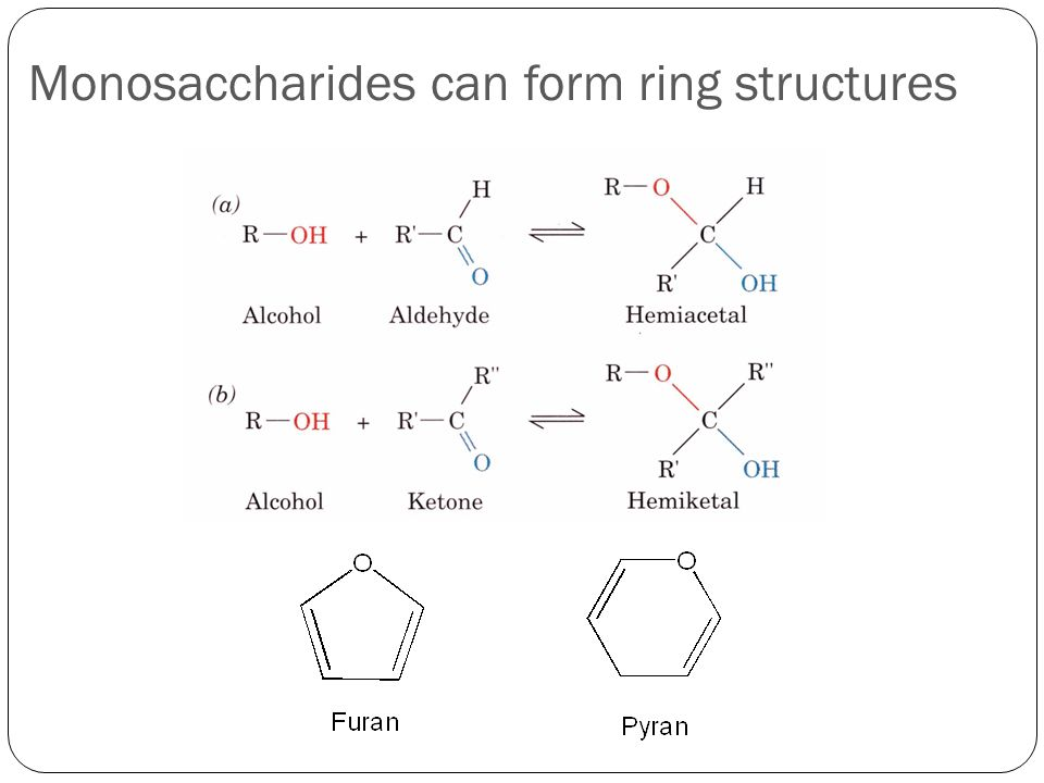 Monosaccharides can form ring structures