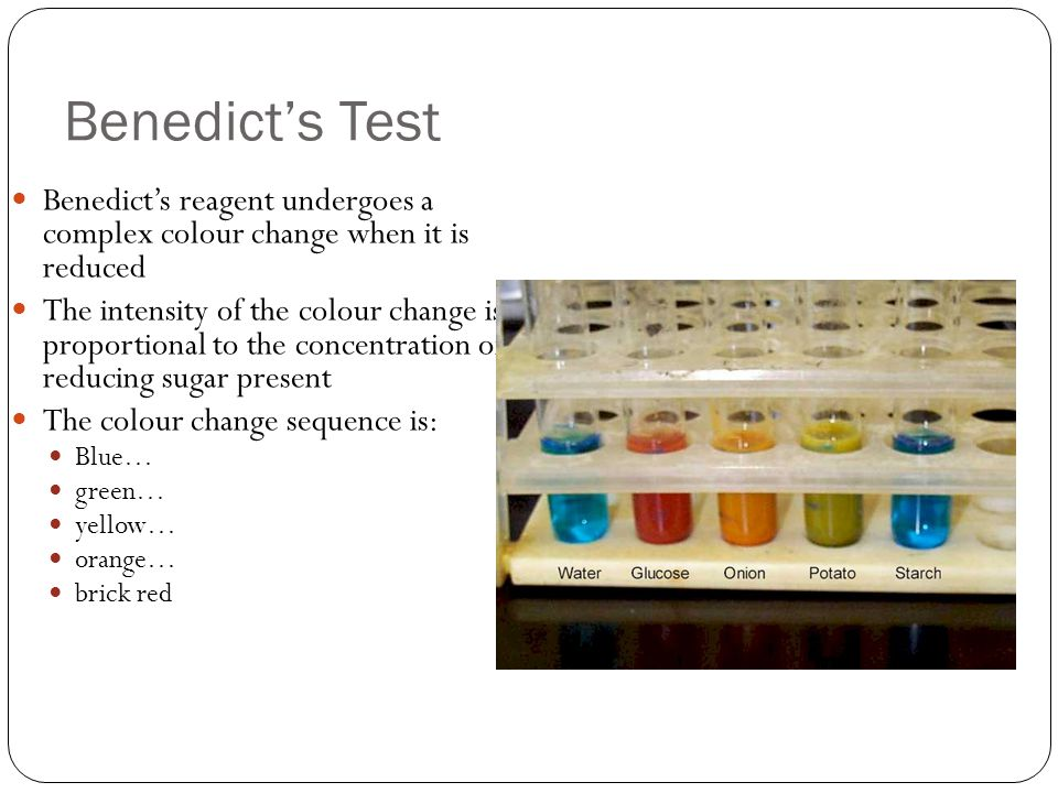 Benedict's Test Benedict's reagent undergoes a complex colour change when it is reduced The intensity of the colour change is proportional to the concentration of reducing sugar present The colour change sequence is: Blue… green… yellow… orange… brick red