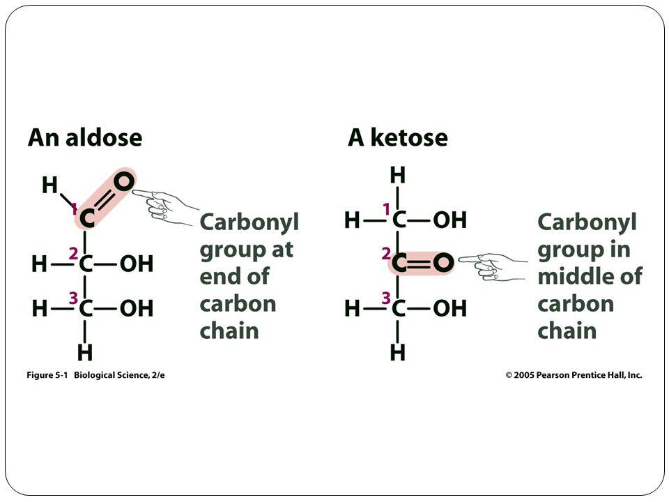 Oxidation/reduction glucose sorbitol