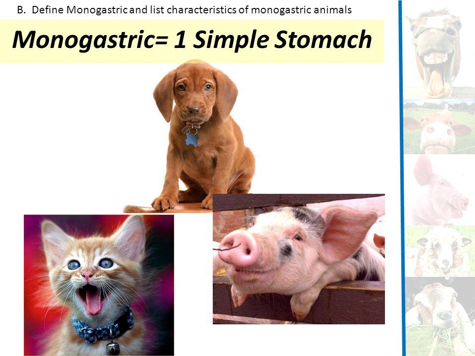 Monogastric= 1 Simple Stomach B. Define Monogastric and list characteristics of monogastric animals