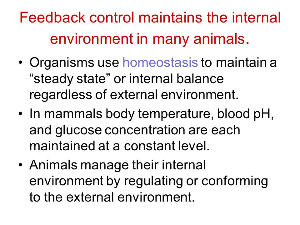 """Feedback control maintains the internal environment in many animals. Organisms use homeostasis to maintain a """"steady state"""" or internal balance regard"""
