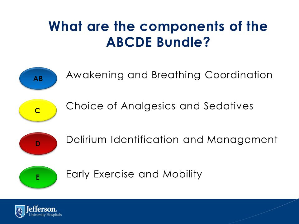 What are the components of the ABCDE Bundle.