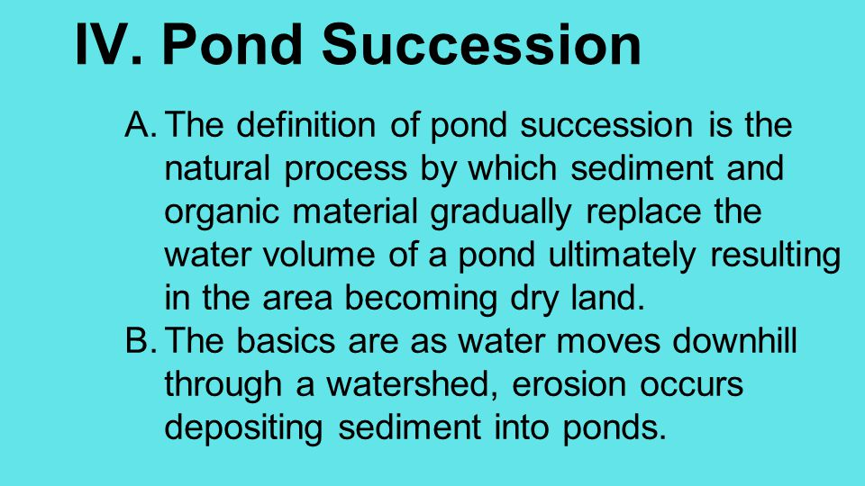 IV. Pond Succession A.The definition of pond succession is the natural process by which sediment and organic material gradually replace the water volu