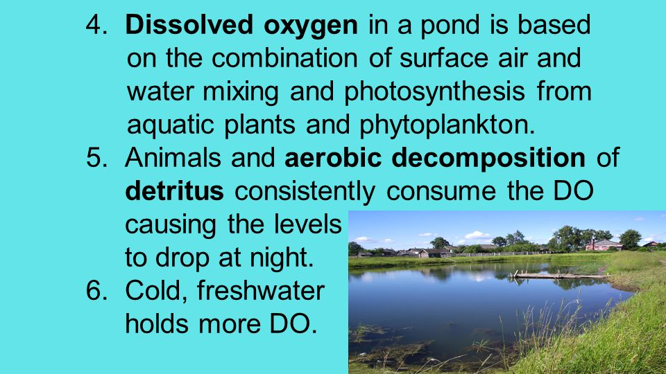 4. Dissolved oxygen in a pond is based on the combination of surface air and water mixing and photosynthesis from aquatic plants and phytoplankton. 5.