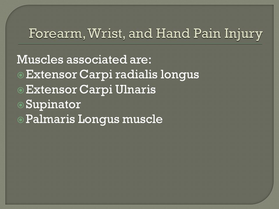 Muscles associated are:  Extensor Carpi radialis longus  Extensor Carpi Ulnaris  Supinator  Palmaris Longus muscle