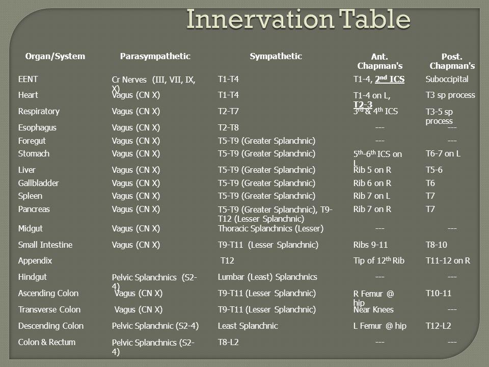 Innervation Table Organ/SystemParasympatheticSympatheticAnt. Chapman's Post. Chapman's EENTCr Nerves (III, VII, IX, X) T1-T4T1-4, 2 nd ICSSuboccipital