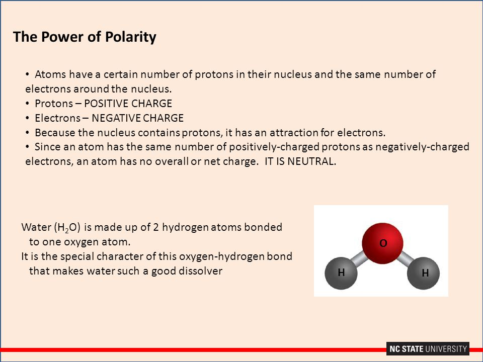 The Power of Polarity Atoms have a certain number of protons in their nucleus and the same number of electrons around the nucleus. Protons – POSITIVE