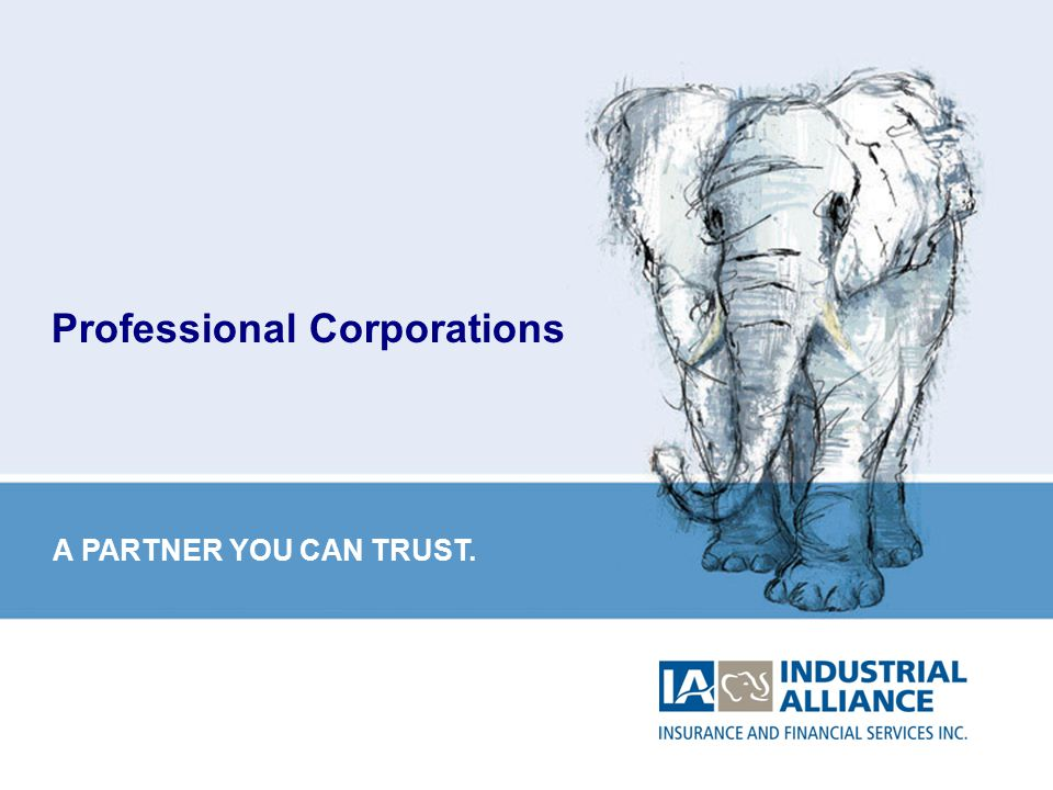 1 Professional Corporations A PARTNER YOU CAN TRUST.
