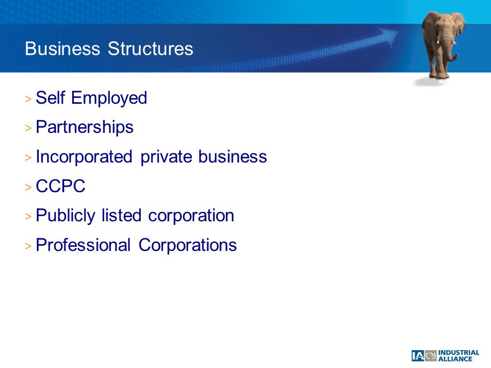 > Self Employed > Partnerships > Incorporated private business > CCPC > Publicly listed corporation > Professional Corporations Business Structures