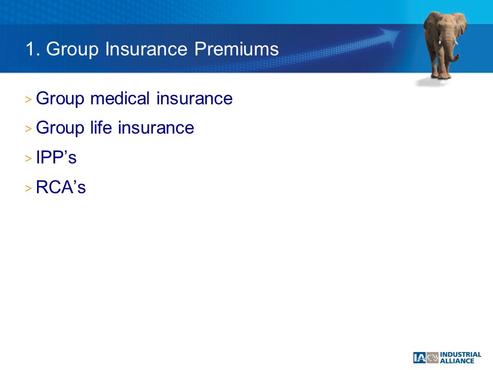 1. Group Insurance Premiums > Group medical insurance > Group life insurance > IPP's > RCA's