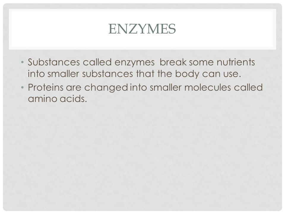 THE ROLE OF ENZYMES IN DIGESTION 1.