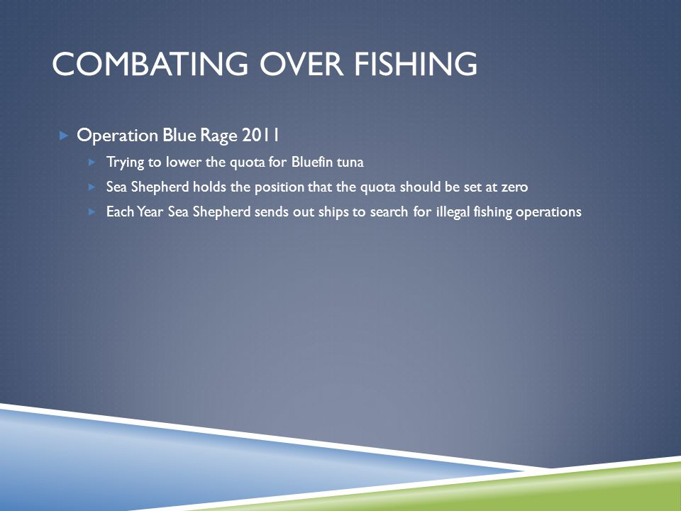 COMBATING OVER FISHING  Operation Blue Rage 2011  Trying to lower the quota for Bluefin tuna  Sea Shepherd holds the position that the quota should be set at zero  Each Year Sea Shepherd sends out ships to search for illegal fishing operations