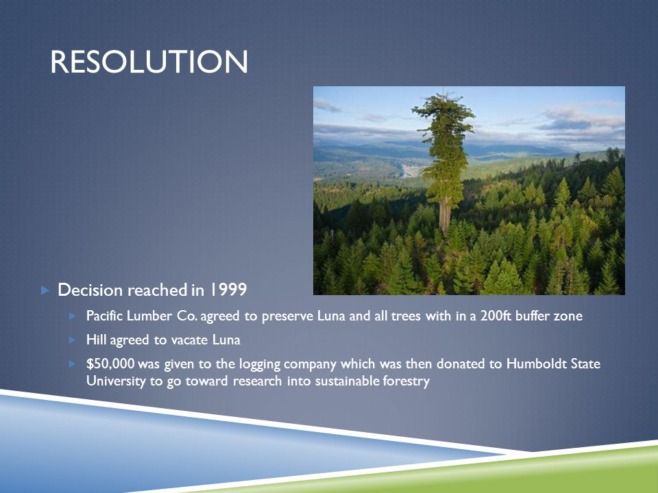 RESOLUTION  Decision reached in 1999  Pacific Lumber Co.