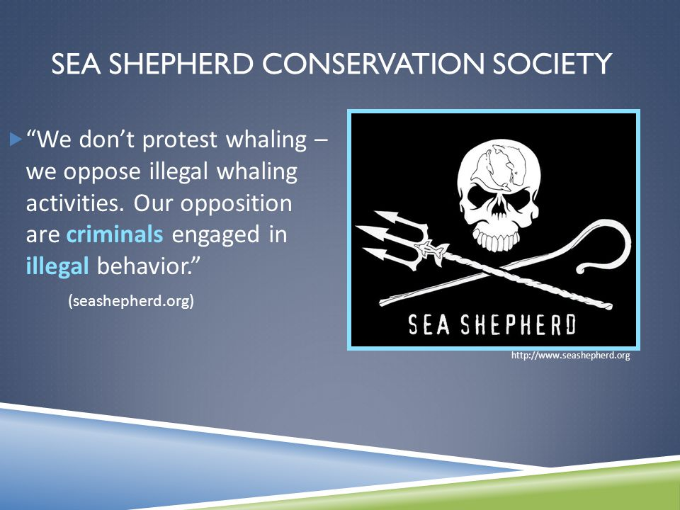 SEA SHEPHERD CONSERVATION SOCIETY  We don't protest whaling – we oppose illegal whaling activities.