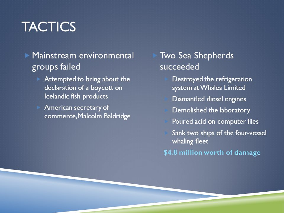 TACTICS  Mainstream environmental groups failed  Attempted to bring about the declaration of a boycott on Icelandic fish products  American secretary of commerce, Malcolm Baldridge  Two Sea Shepherds succeeded  Destroyed the refrigeration system at Whales Limited  Dismantled diesel engines  Demolished the laboratory  Poured acid on computer files  Sank two ships of the four-vessel whaling fleet $4.8 million worth of damage