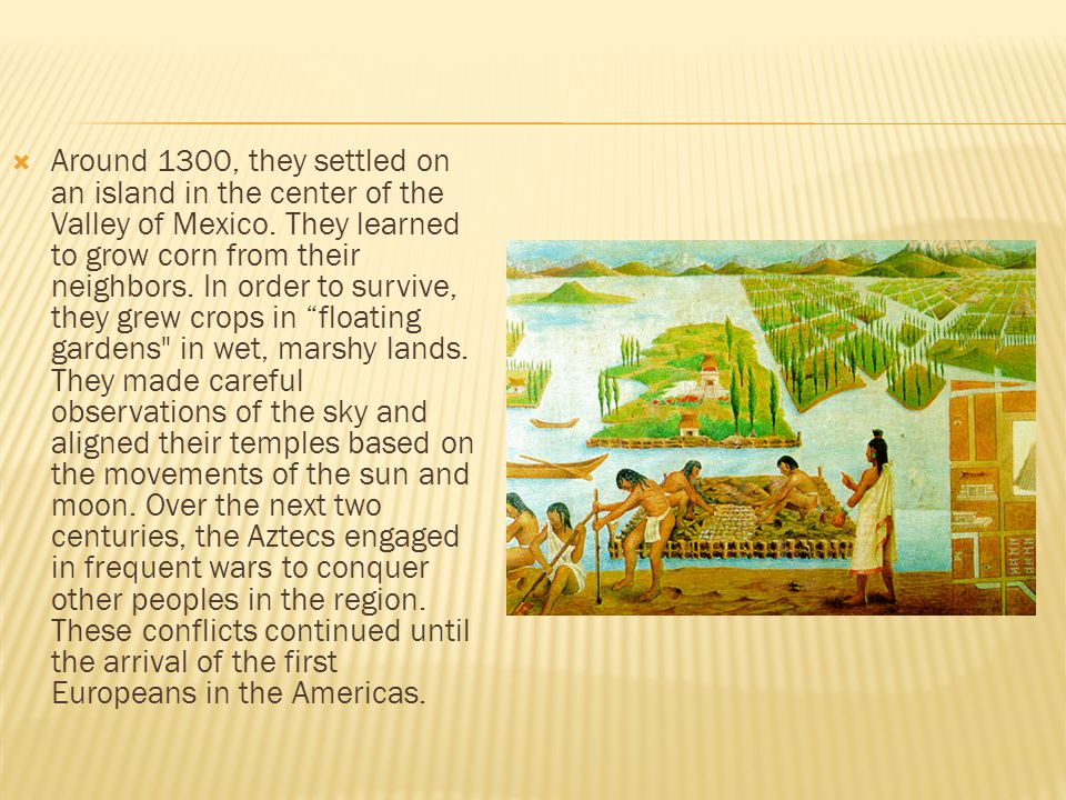  Around 1300, they settled on an island in the center of the Valley of Mexico. They learned to grow corn from their neighbors. In order to survive, t